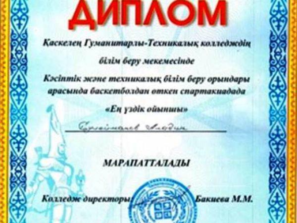 Дипломы 03